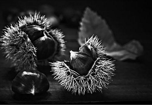 Chestnuts Tariq Dajani
